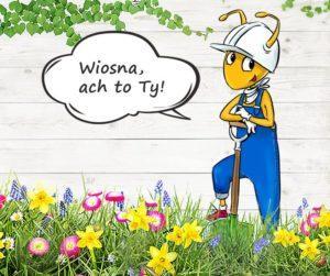wiosna ach to ty 300x251 Aktualności