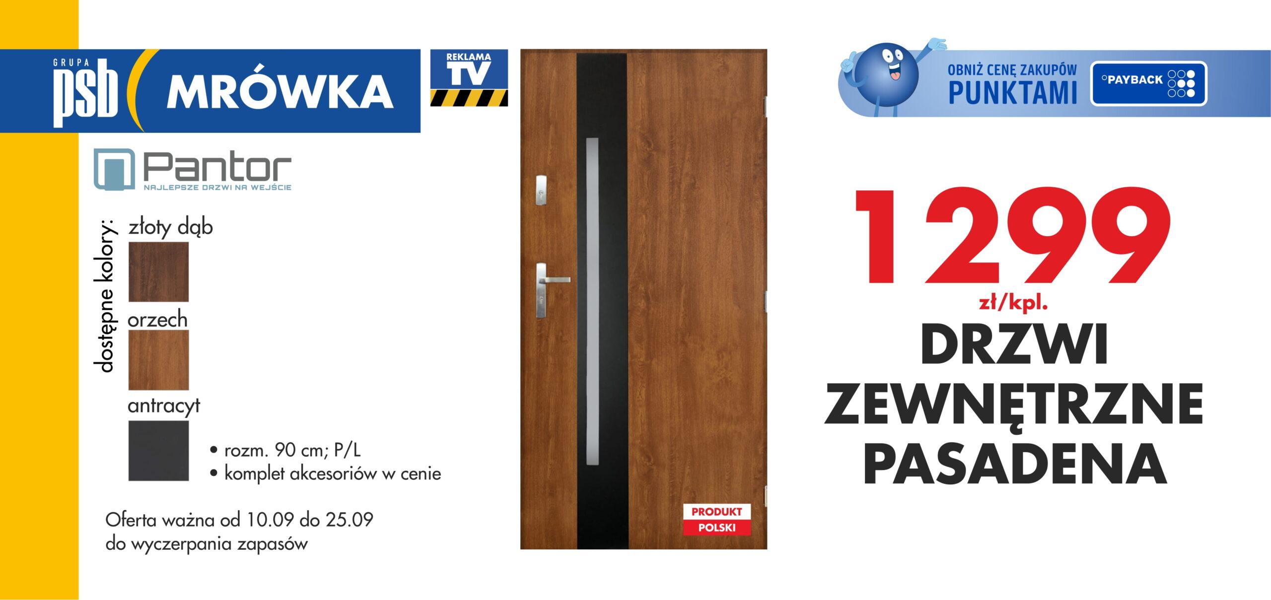 drzwi pasadena